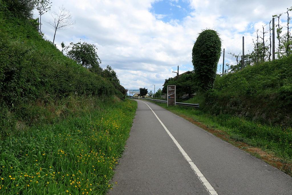 pista-de-ciclismo-guimaraes-sinalizacao