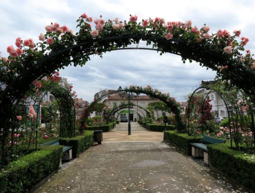 ovar-jardim-das-rosas