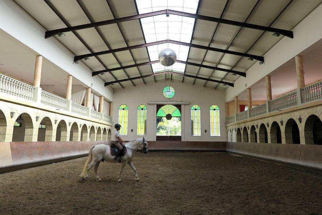 academia-equestre-arte-lusitana-vila-verde