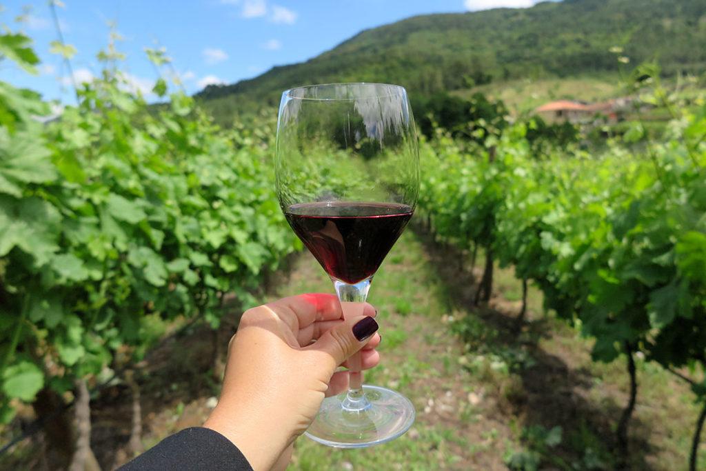 vinho-erbon