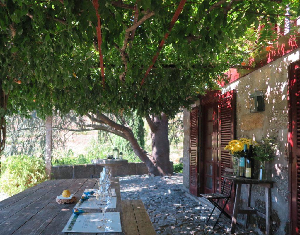 Sala de provas Quinta de Covela